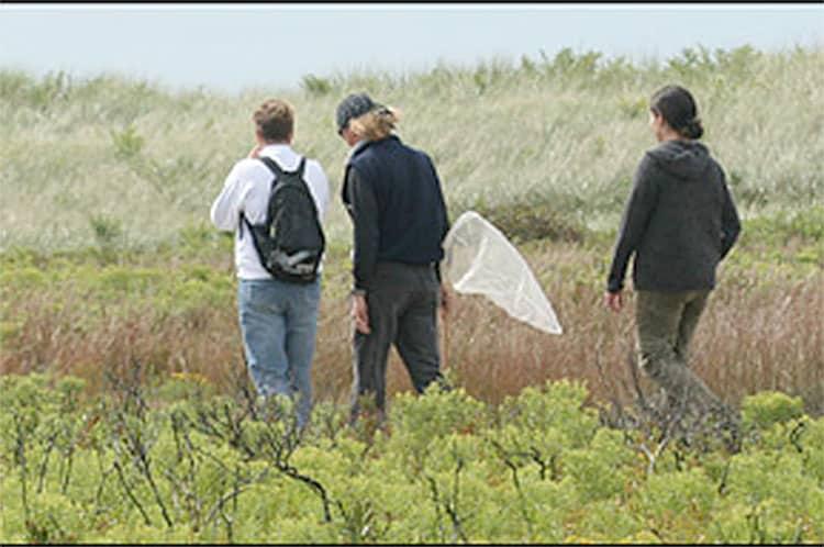 Nantucket BioDiversity Initiative