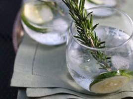 Gin & Tonic | Nantucket | MA