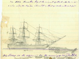 Drawing by Nickerson of the Essex whaleship attack