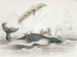 Whaling | Nantucket