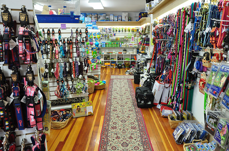 Geronimo's of Nantucket | Pet Supplies