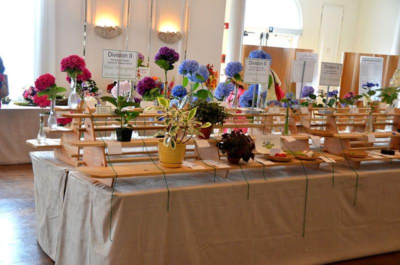 Nantucket Flower Show | Nantucket Garden Club