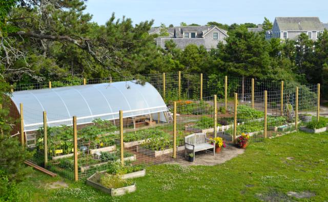 Nantucket Pollinator Garden