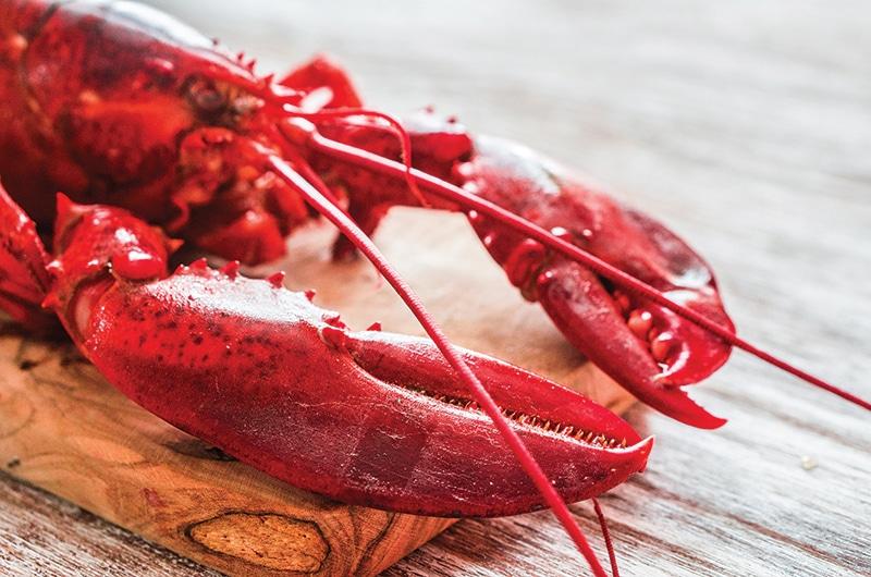 Sousa's Seafood | Nantucket, MA