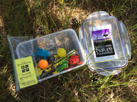 Geocaching on Nantucket