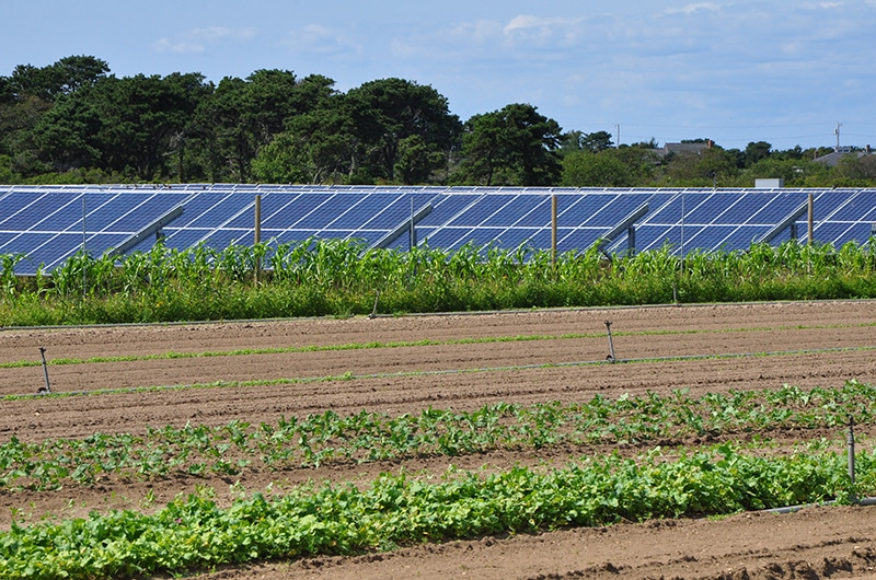 Bartlett's Farm Solar Power | Nantucket, MA