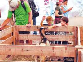 Nantucket Island Fair | Nantucket, MA