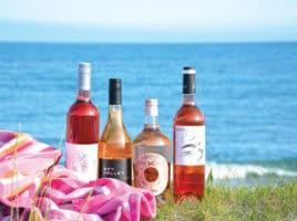 Beach Wine | Nantucket, MA