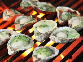 Oysters | Nantucket, MA