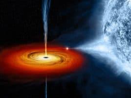 Black Holes | Nantucket, MA