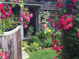 Nantucket Garden Club | Nantucket, MA