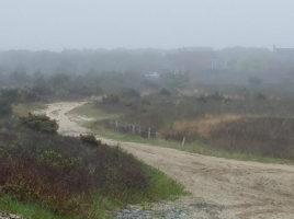 foggy | Nantucket, MA