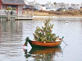 Boat Tree | Nantucket, MA