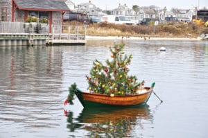 Boat Tree | Nantucket, MA