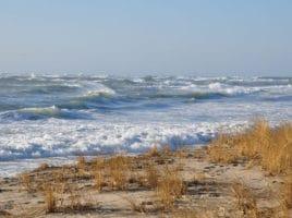 winter dunes | Nantucket, MA