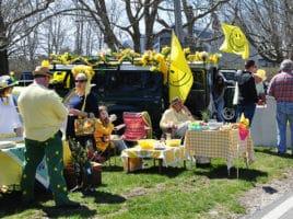 Daffodil tailgate | Nantucket, MA