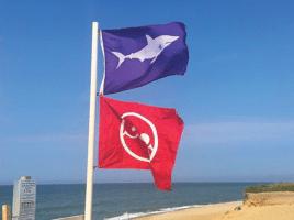 shark flag | Nantucket, MA